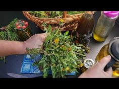 Seaweed Salad, Natural Remedies, The Creator, Cancer, Herbs, Ethnic Recipes, Festive, Salads, Herb
