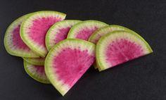 Portrait of a Watermelon Radish Waldorf Salad with Meyer Lemon Vinaigrette – A Standout