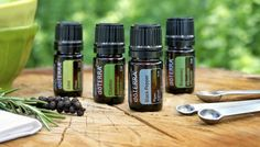 How to Purchase doTERRA Essential Oils! - LA Healthy Living