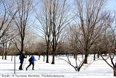 Don't miss out this winter and book your stay in Montreal now! With amazing winter activities like these, you won't want to be left out! Winter Activities, News Articles, Montreal, Winter Wonderland, Blog, Outdoor, Outdoors, Blogging, Outdoor Games