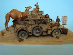 DAK and camel