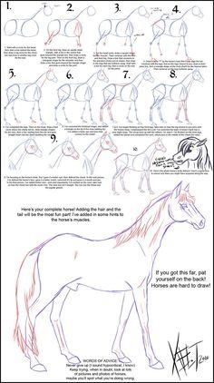 Dessin d'un cheval 1674     comment dessiner