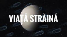 Posibilă viață pe Venus! 😲 Venus, Planets, Celestial, Youtube, Movies, Movie Posters, Christians, Films, Film Poster