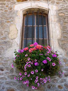 Big flower window   Flickr - Photo Sharing!