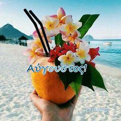 Jamaica Vacation, Hawaii Honeymoon, Hawaii Hawaii, Hawaii Travel, Summer Travel, Tropical Beaches, Tropical Vibes, Big Island Hawaii, Island Beach