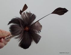 New Design Today Chocolate Feather Comb Fascinator by tiaramani