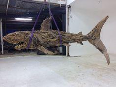 Drift wood shark