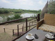 Els meus cafès. Cafè a Selous, Tanzania.