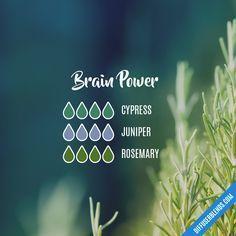 Brain Power � Essential Oil Diffuser Blend