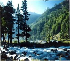 Gangotri Honeymoon Packages for Newly Wed Couples