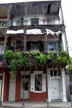 New Orleans. Never been, always wanted to go.