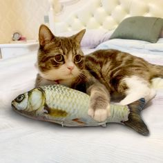Lalang Catnip Fish Toy Cat Interactive Chew Toy (20cm ... – shopusawarehouse Dog Booties, Cat Litter Mat, Interactive Cat Toys, Kitten Toys, Catnip Toys, Fish Cat Toy, Pet Paws, Cats And Kittens, Kitty Cats