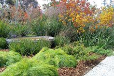 small garden designs ideas front garden design ideas2048 x 1365 1103 kb jpeg x
