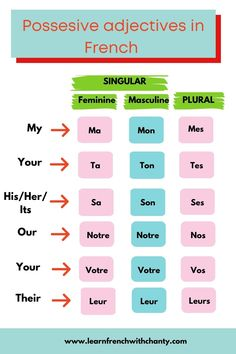 The key to understanding Possessive adjectives in French