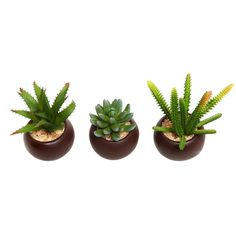 Artificial Mini Succulent Plants with Round Brown Pots, Set of 3 - MyGift -- Read more  at the image link.