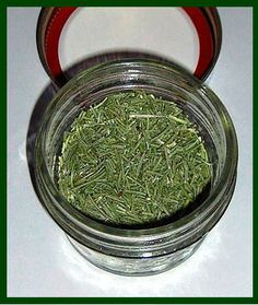 HOW TO SELECT AND STORE ROSEMARY