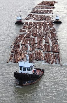 tugboats pulling logs - Google Search If I was a bird, I could take a pic like this right where I live on the Fraser!