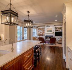 Addition and Renovation Wilmington, DE - traditional - Family Room - Philadelphia - Period Architecture Ltd.