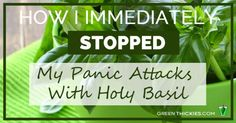 How I Immediately Stopped My Panic Attacks With Holy Basil - this is worth looking into.