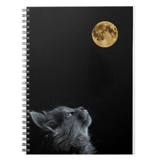 cat lovers Notebook   first day of school qoutes, smarties first day of school, school suppies #backtoschoolpromos #backtoschoolmonday #backtoschoolseason, back to school, aesthetic wallpaper, y2k fashion