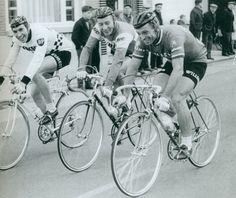 Drie groten op één plaatje: Merckx, Anquetil+ & Van Looy...