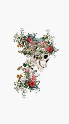 Skull Wallpapers for mobile Wallpaper Skull Wallpaper, Mobile Wallpaper, Wallpaper Backgrounds, Iphone Wallpaper, Medical Wallpaper, Anatomy Art, Foto Art, Skull Art, Aesthetic Wallpapers