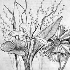 Original work by Leslie Nicole  Pen and ink illustration   www.fivebyln.com