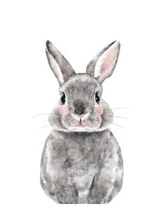 """""""Baby Animal Rabbit"""" - Limited Edition Art Print by Cass Loh in beautiful frame options and a variety of sizes."""