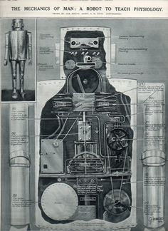 """""""The Mechanics of Man: A Robot to Teach Physiology"""" Constructed for the Schoolboys' Exhibition at the New Horticultural Hall, London. /via Ptak Science Books Vintage Robots, Retro Robot, Science Fiction Art, Science Books, Rude Mechanicals, Gross Anatomy, Ex Machina, Ghost In The Shell, Retro Futurism"""