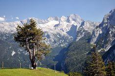 Hotel Kronenhirsch in Russbach, Dachstein West Salzburg Austria, Mountain S, Alps, Mount Everest, Hiking, Holiday, Nature, Travel, Small Hotels