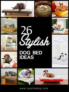 Each dog is unique and so should their dog beds. Here are several ideas for making a comfortable bunk for your furry friends! Learn how to make DIY dog beds