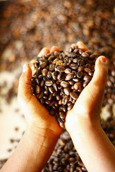 green coffee hatása 3 hetes intenzív fogyókúra
