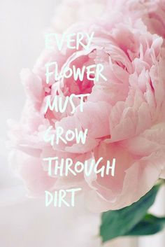 Every Flower Must GROW through dirt http://www.mindmovies.com/blogroll/index.php?26919