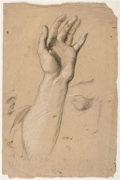 Study of an arm - Théodore Chasseriau Arm Drawing, Life Drawing, Trois Crayons, Religious Paintings, Pencil Art Drawings, Old Master, Belle Photo, Oeuvre D'art, Art History