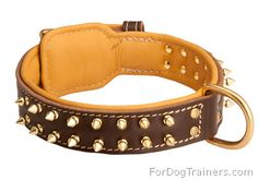 Royal look for your doggy! S89.00 dog #collar