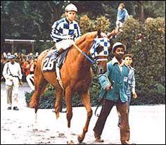 Secretariat- Triple Crown Winner
