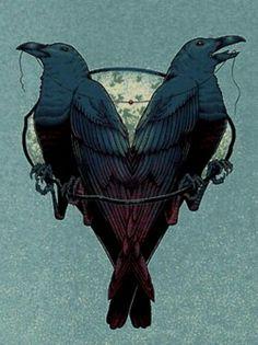 Crows Ravens: Ravens.
