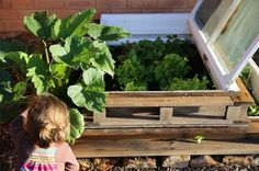 Mother Nature Network - 10 beautifully useful things made from 'useless' rubbish. planter box made from an old window is also a cold frame for spring seedlings