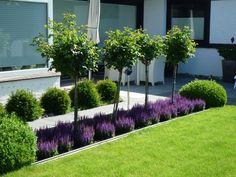 Back Garden Design, Modern Garden Design, Backyard Garden Design, Modern Design, Yard Design, Front Garden Landscape, Front Yard Landscaping, House Landscape, Landscaping Ideas