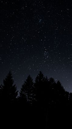 Cute #Sky #starrysky #trees #night #wallpapers hd 4k background for android :) from play.goog...