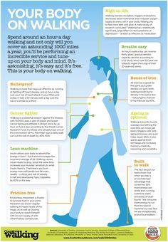 New Balance Walking Shoes With Rollbar Technology. Walking shoes are created specifically for that activity of walking. They may be an important purchase in the event that you may spend lots of time walking. Health Benefits Of Walking, Walking For Health, Walking Exercise, Coconut Health Benefits, Walking Workouts, Pilates Benefits, Yoga Benefits, Exercise Benefits, Nordic Walking