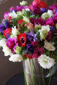 flowers 切花 - fleurs trémolo フル-ル トレモロ 広島市の花屋