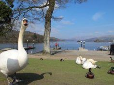 The Lake District, Cumbria England, UK