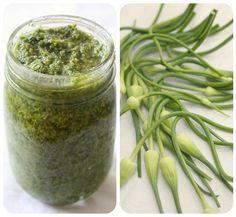 Garlic Scape Pesto Recipe ♥