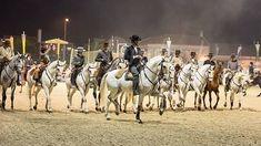 Place: Golegã Feira Nacional do Cavalo - National Horse Fair in Golega, Lisbon Region, Portugal