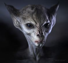 Alien Head by TARGETE.deviantart.com on @DeviantArt