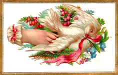 Antique Images: Free Bird Clip Art: Vintage White Dove Graphic with Flowers and Ribbon on Victorian Die Cut