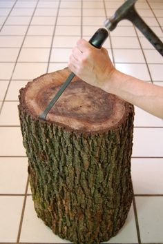 Stumped How to Make a Tree Stump Table this tutorial is to make a table, but we& use it to clean/smooth/seal some tree stumps to make seats out of them for the fire pit. Tree Stump Furniture, Tree Stump Table, Log Table, Tree Stumps, Wood Stump Side Table, Tree Stump Decor, Rustic Log Furniture, Tree Logs, Tree Bark