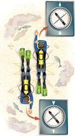Compass Navigation Made Easy | Scuba Diving #scubadivingtrippackinglist #scubadivingequipment #scubadivingvacations