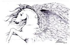 Rearing Pegasus Fantasy Equine Horse Original Ballpoint Pen Sketch by T London